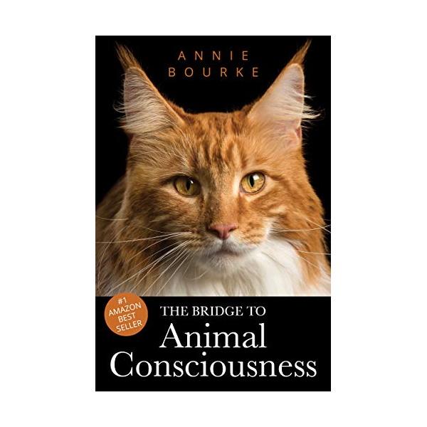 the bridge to animal consciousness annie bourne