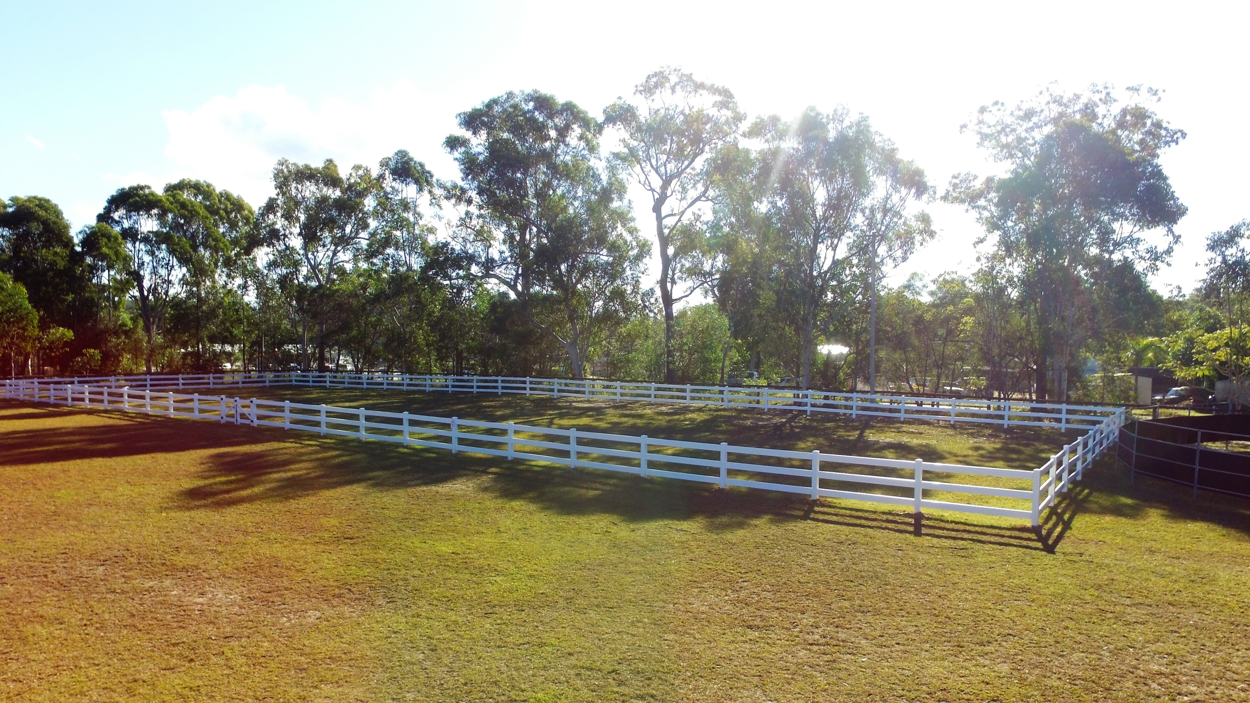 dreassage arena for hire sunshine coast